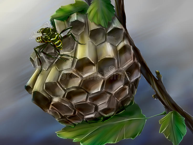 Wasp nest and a wasp. Hand drawn digital art of a little waps nest built on a branch, and a wasp. Wasps make their nests of paper they make themselves out of royalty free illustration