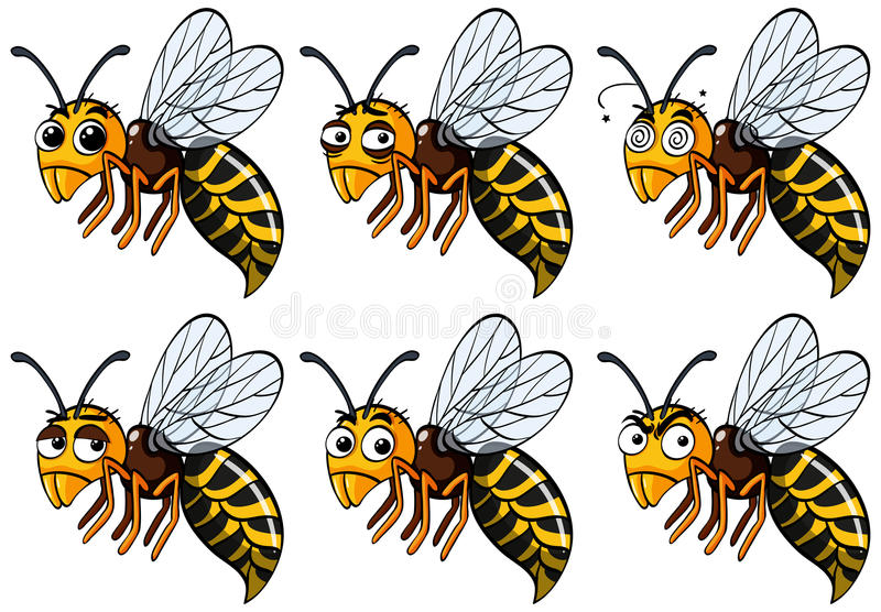 Wasps with different emotions. Illustration vector illustration