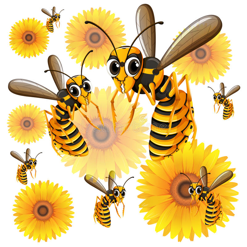 Wasps flying around yellow flowers. Illustration vector illustration