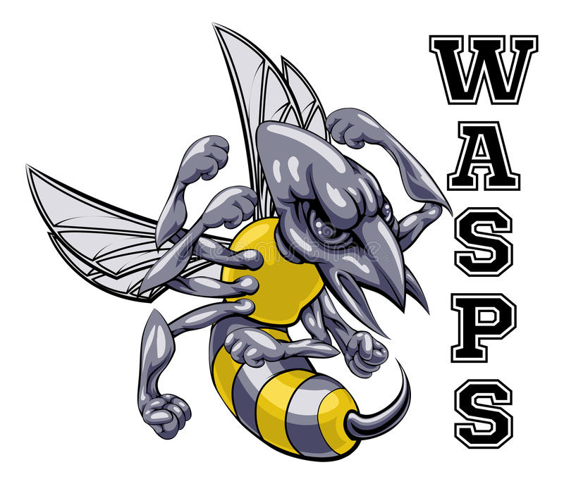 Wasps Mascot. An illustration of a cartoon wasp sports team mascot with the text Wasps royalty free illustration