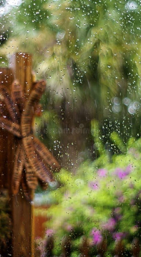 Wasser auf buntem Florida-Garten des Fensters lizenzfreie stockfotos