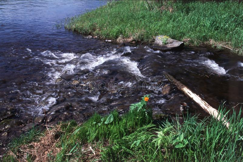 Wasser, das über Felsen bewegt lizenzfreie stockfotos