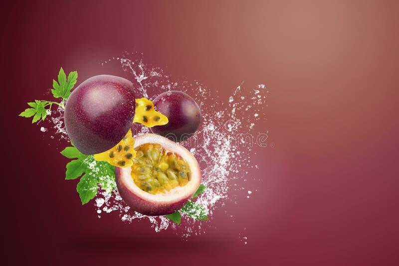 Wasser, das auf frischem Passionfruit auf rotem Hintergrund spritzt stockfoto