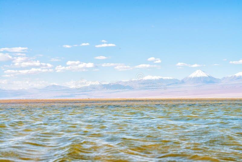 Wasser in der Atacama-Wüste lizenzfreies stockfoto