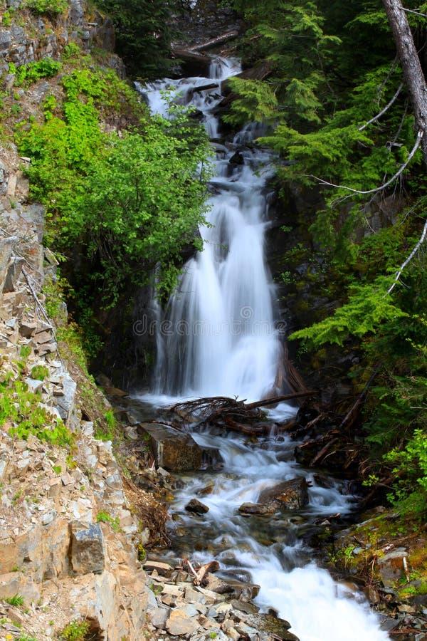 Wasser fällt in den Mount Rainier lizenzfreies stockbild