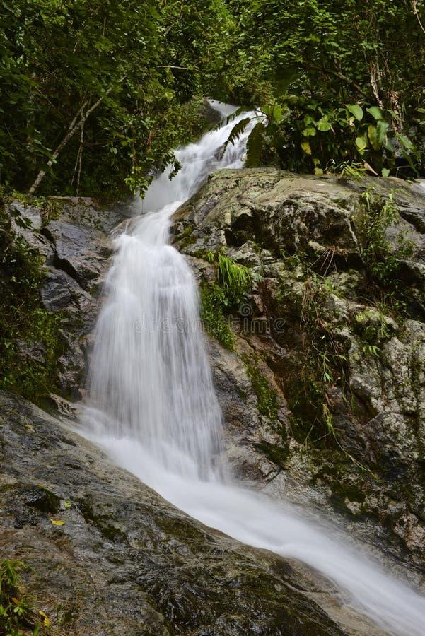 Wasser-Fall stockbild