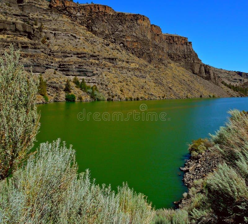 Wasser-Grün stockbild