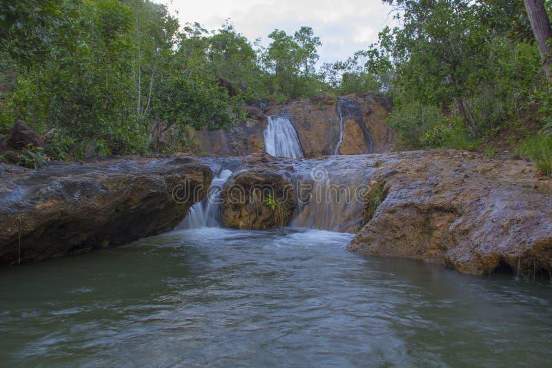 Wasser-Hetzen lizenzfreie stockfotografie