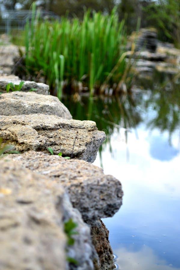 Wasser ist die Quelle von Frische stockbilder