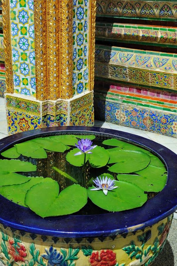 Wasser-Lilie und dekorative Mosaik-Wand lizenzfreie stockbilder