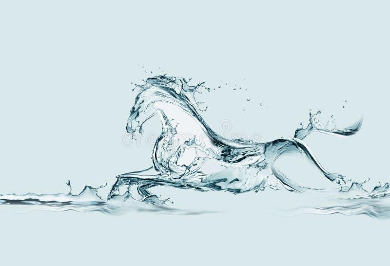 Wasser-Pferd stockfotografie