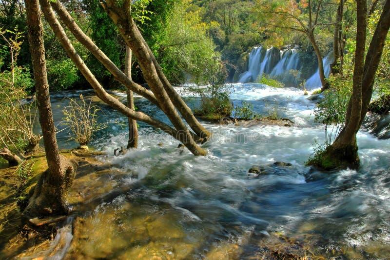 Wasser-Strom vom Wald fällt, um zu kaskadieren lizenzfreie stockfotos