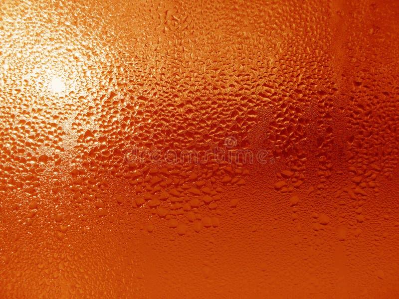 Wasser-Tropfen auf Glasoberfläche stockfotografie