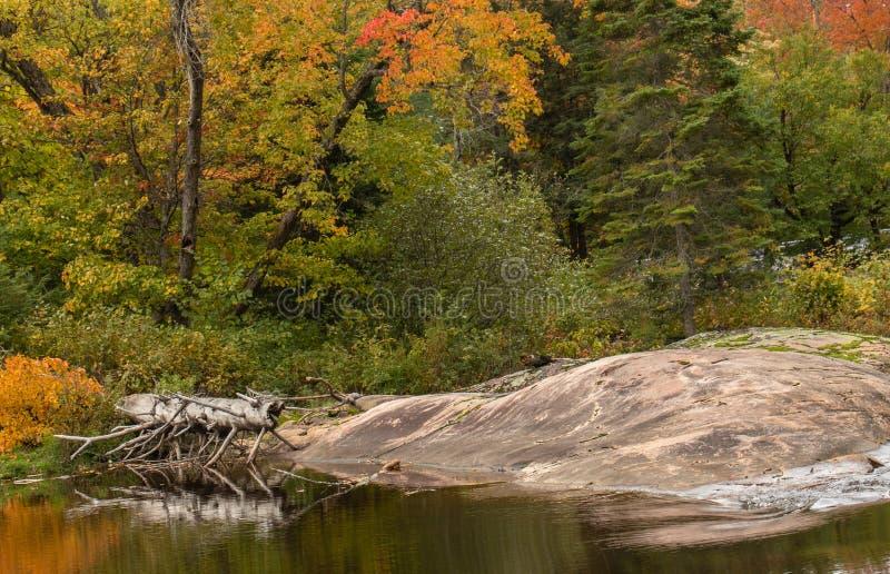 Wasser und Felsen Muskoka im Herbst lizenzfreie stockbilder