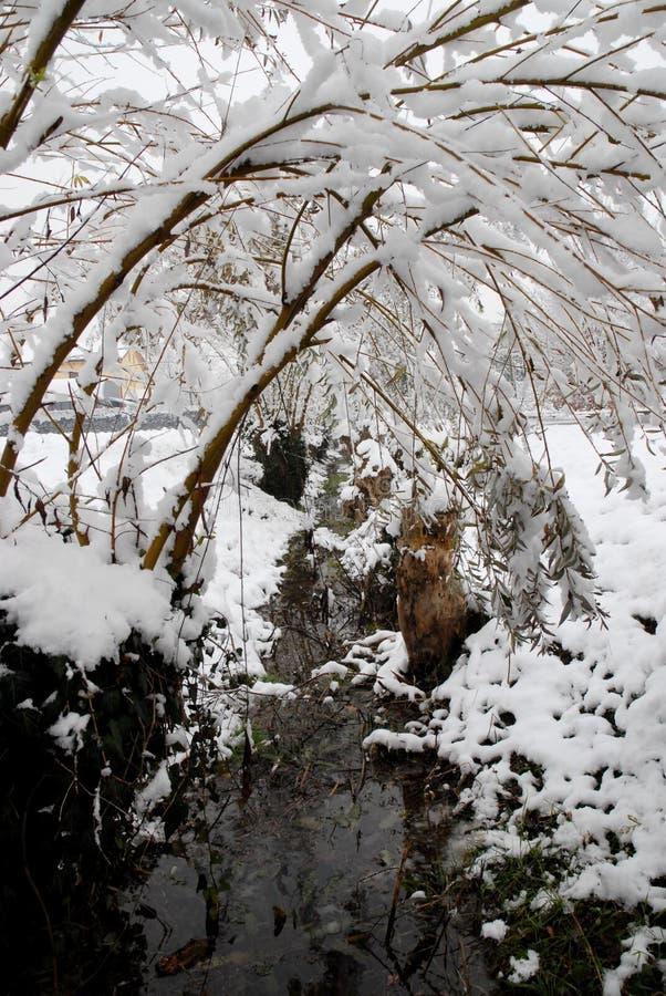 Wasser und Schnee stockfoto