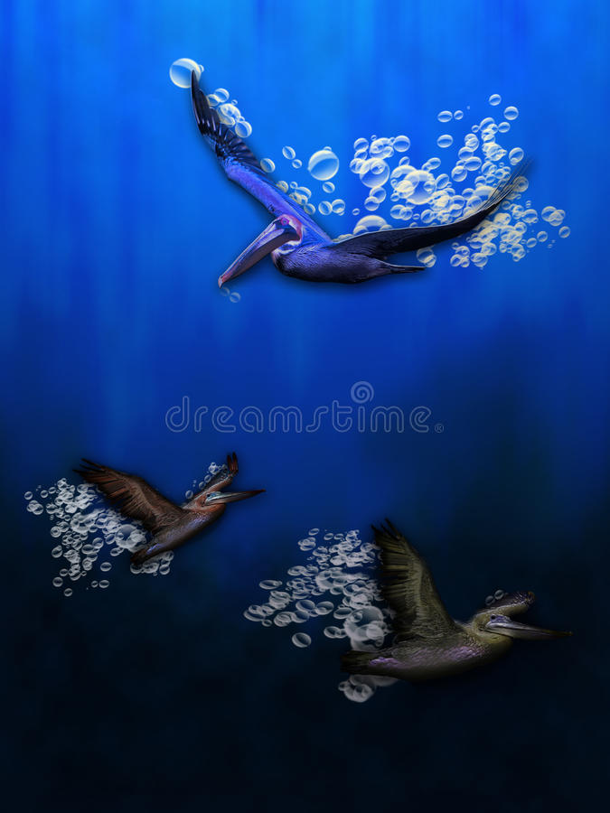 Wasser-Vögel stock abbildung
