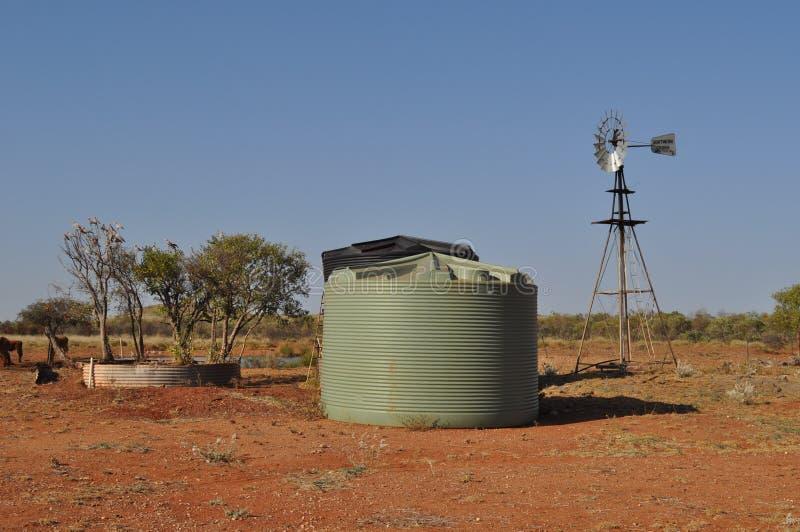 Wasserbehälter und -windmühle im australischen Hinterland mit Vögeln in der Baumranchstation lizenzfreie stockfotos