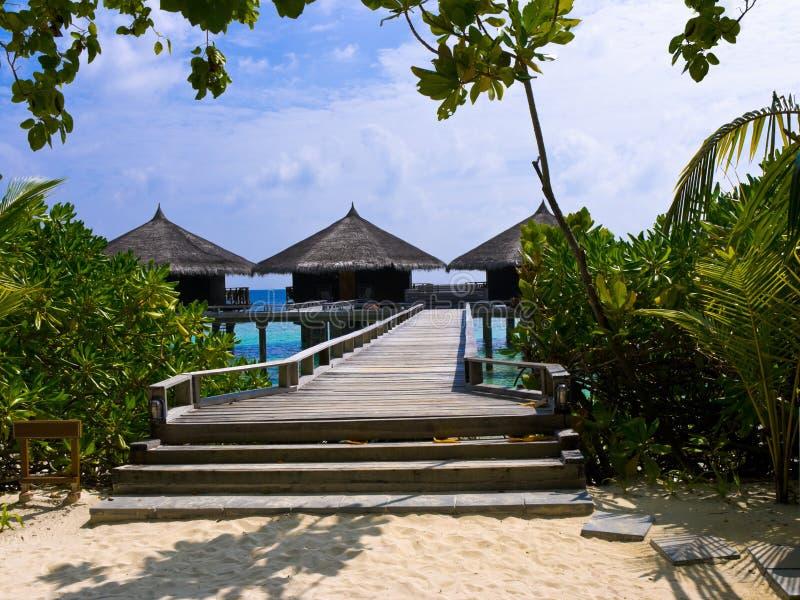 Wasserbungalowe auf einer tropischen Insel stockfotos