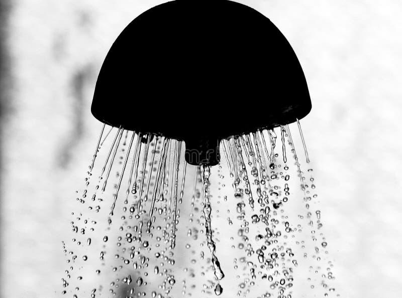 Wasserdusche lizenzfreie stockbilder