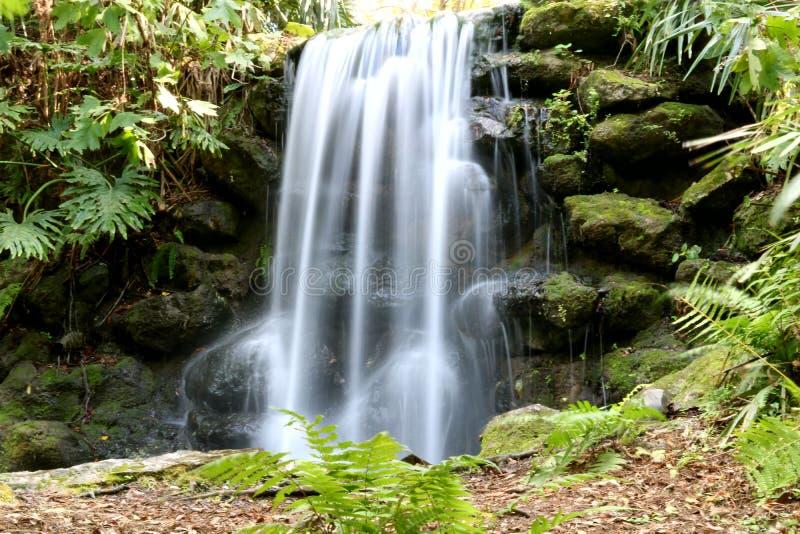 Wasserfälle rainbowsprings lizenzfreie stockfotografie