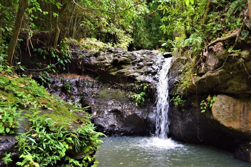 Wasserfälle Subic Bay Philippinen EL Kabayo stockfotos