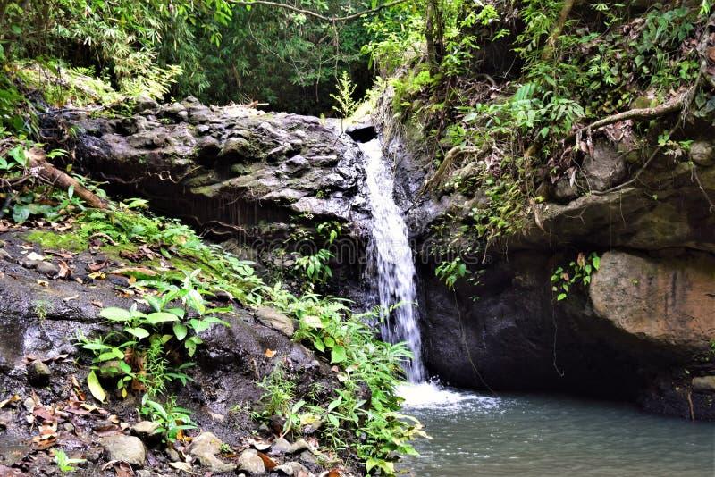 Wasserfälle Subic Bay Philippinen EL Kabayo stockfotografie