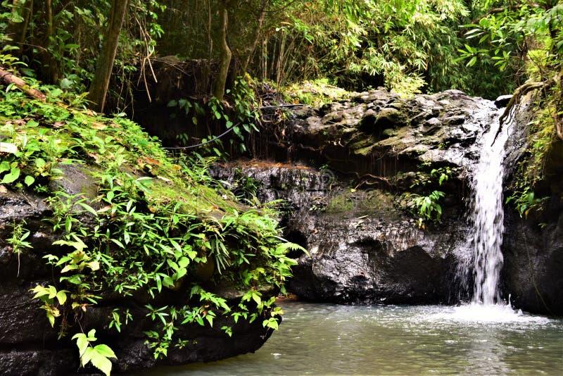 Wasserfälle Subic Bay Philippinen EL Kabayo lizenzfreie stockfotografie