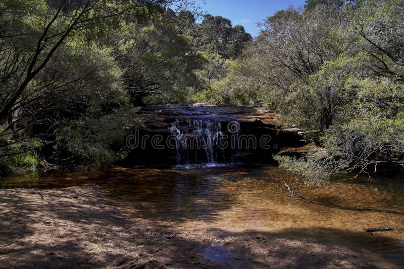 Wasserfälle in Wentworth Falls, New South Wales, Australien stockfotografie