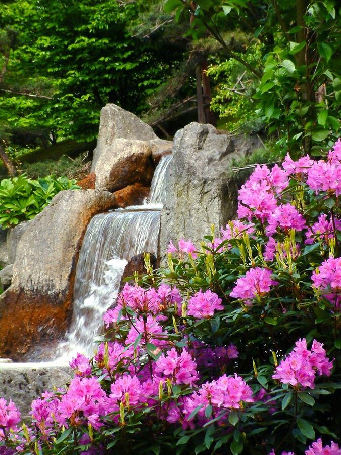 Wasserfall. stockfoto
