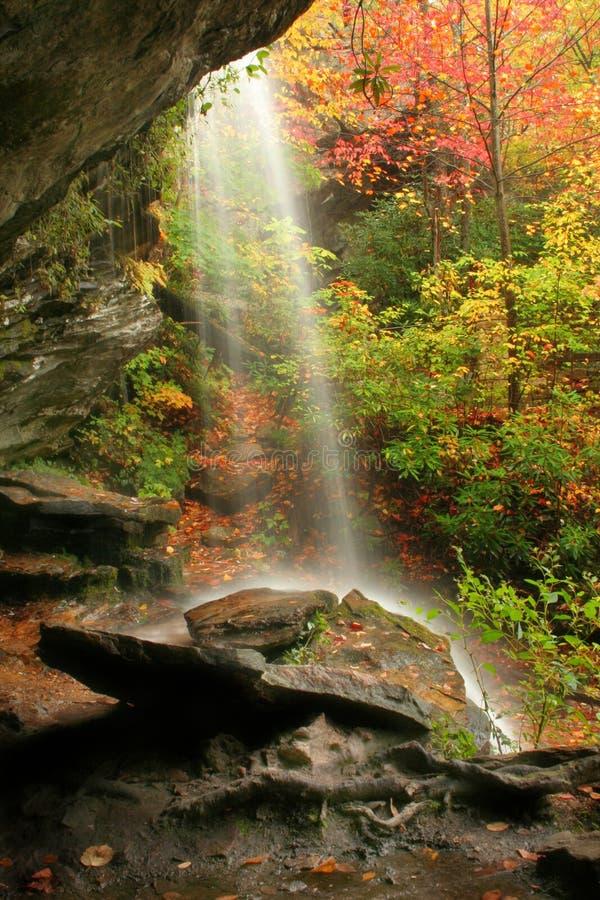 Wasserfall #2 stockbilder