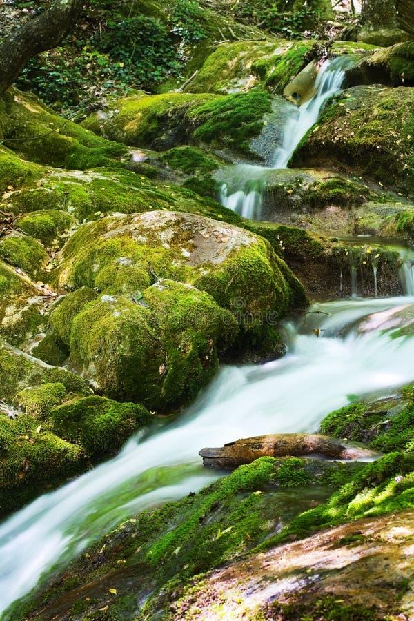 Wasserfall stockbild