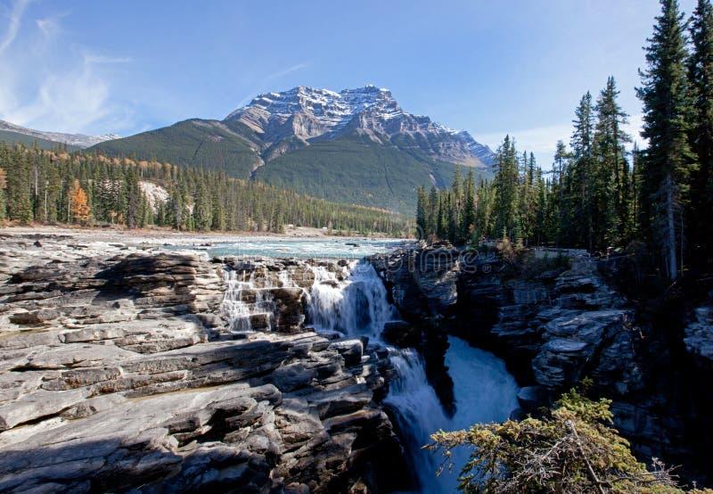 Wasserfall an athabasca Fällen stockfotografie