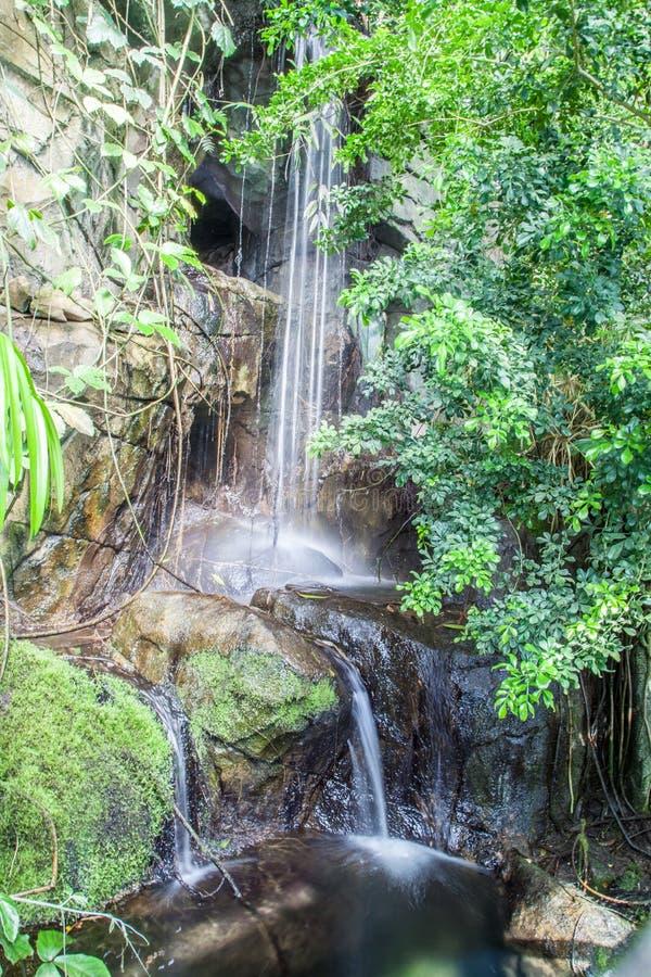 Wasserfall auf The Creek lizenzfreie stockbilder