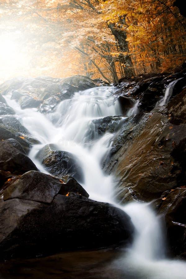 Wasserfall auf Gebirgsfluss mit bunten Bäumen im Hintergrund lizenzfreie stockbilder