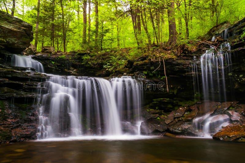 Wasserfall auf Küchen-Nebenfluss in Ricketts Glen State Park stockfotografie