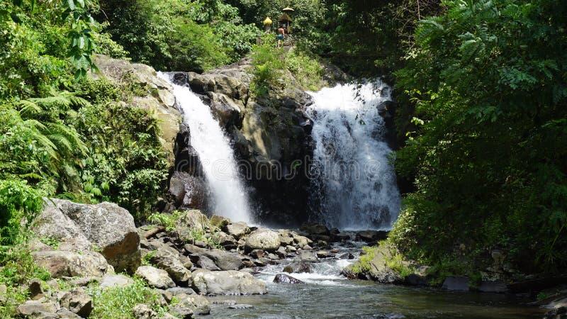 Wasserfall Bali stockfoto