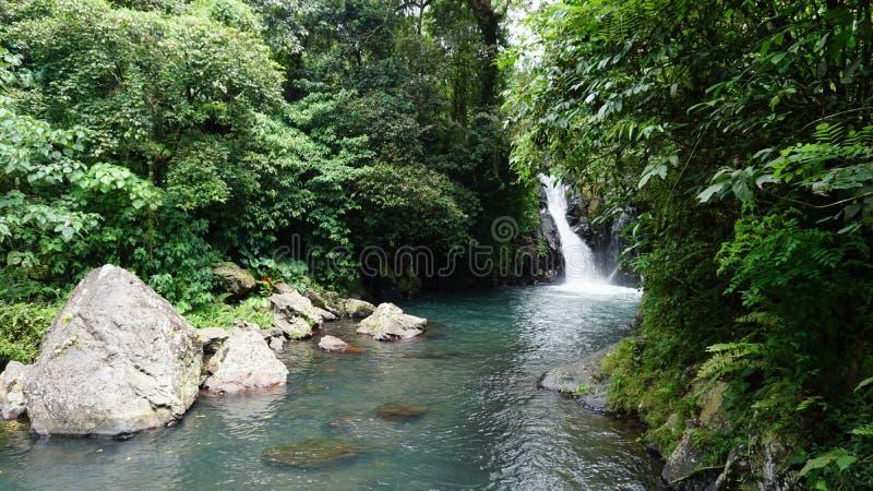 Wasserfall Bali stockfotografie