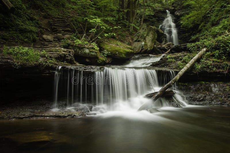 Wasserfall bei Ricketts Glen State Park, Pennsylvania lizenzfreie stockfotografie