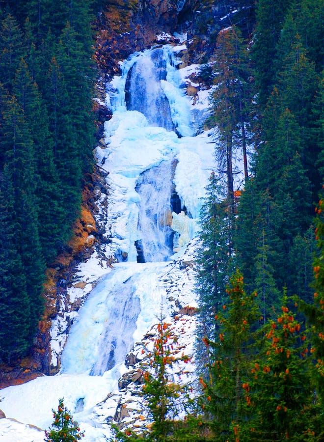 Wasserfall in den Alpen lizenzfreies stockbild