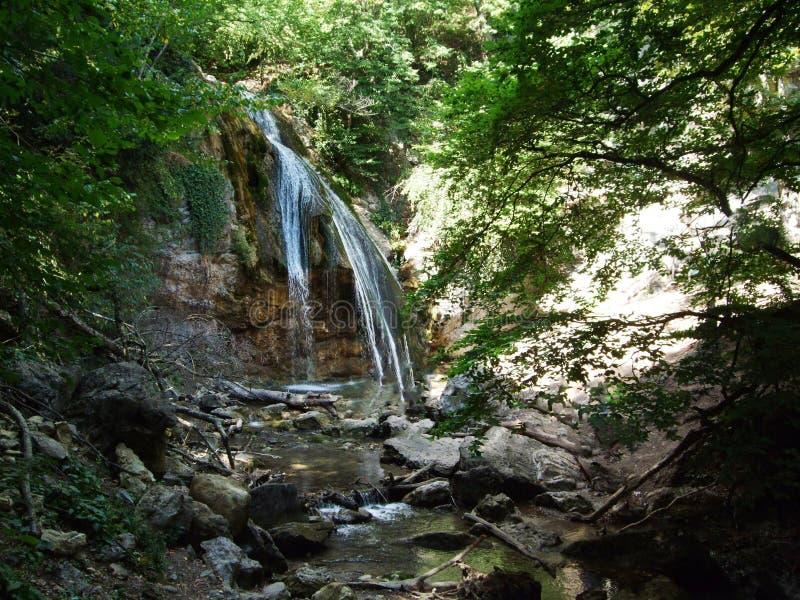 Wasserfall in einem Kiefernwald Krim stockbilder