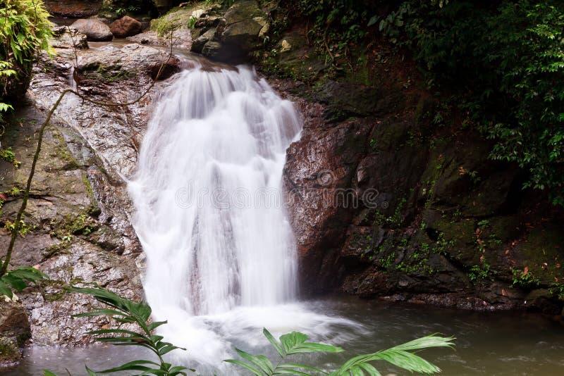 Wasserfall in einem tropischen Wald stockfotos