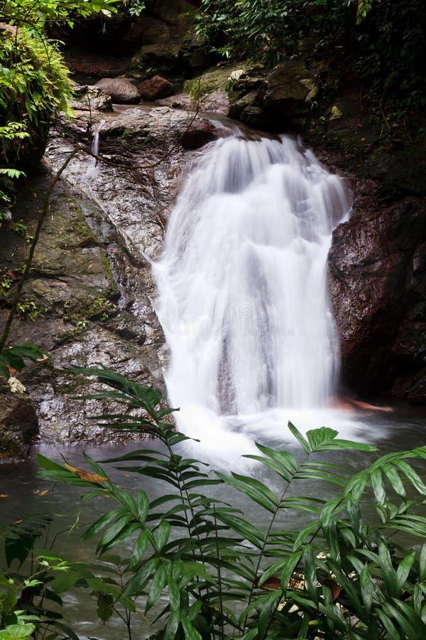 Wasserfall in einem tropischen Wald stockfotografie