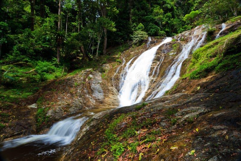 Wasserfall in einem tropischen Wald stockbilder