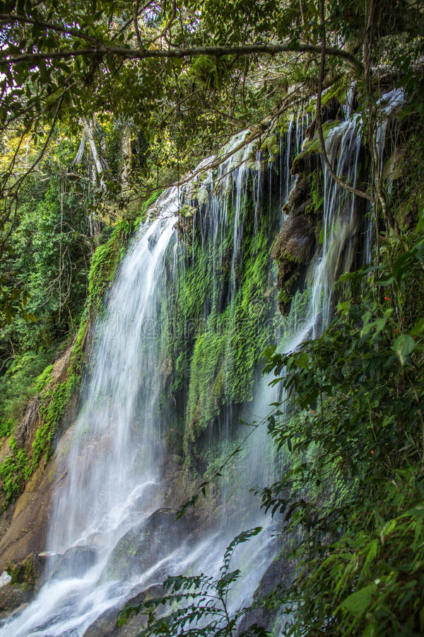 Wasserfall EL Nicho in Kuba lizenzfreie stockfotografie
