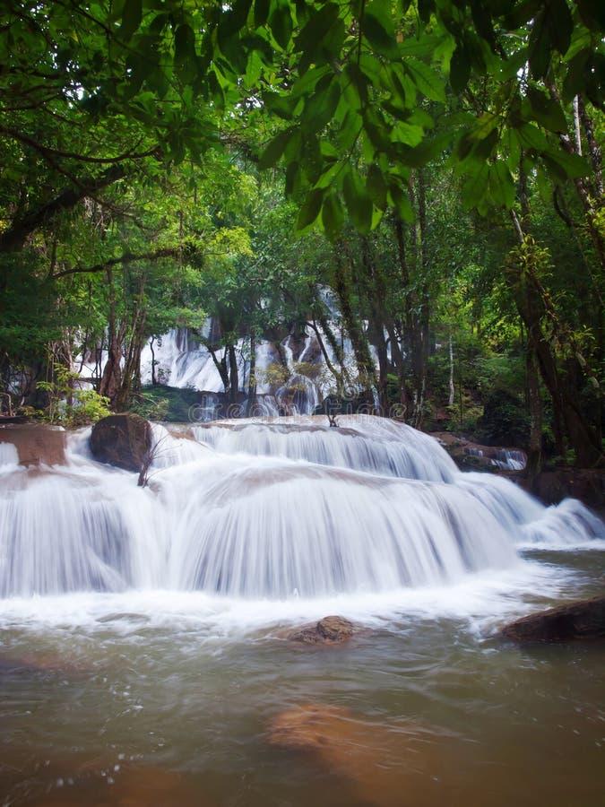Wasserfall herein tief des Waldes lizenzfreie stockfotografie