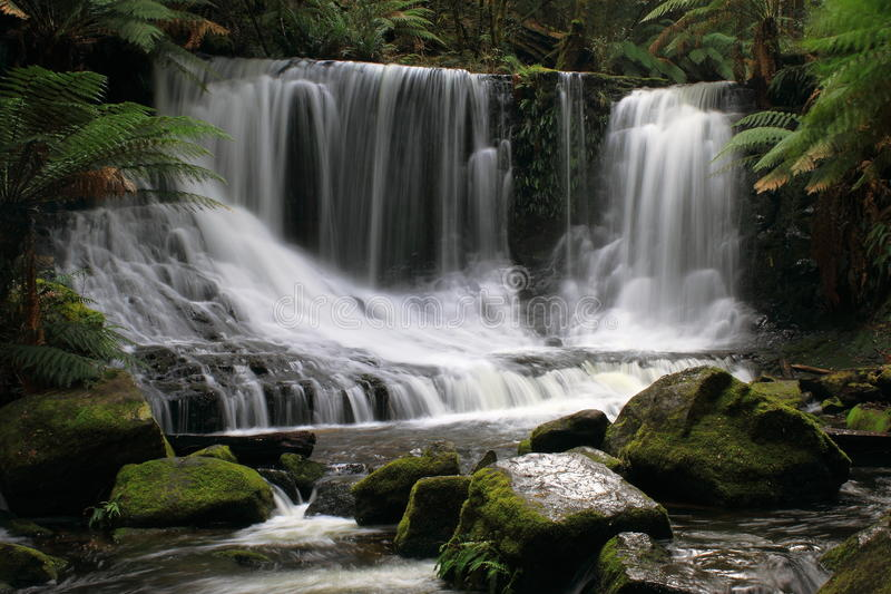 Wasserfall im Berg-Feld-Nationalpark Tasmanien stockfotos