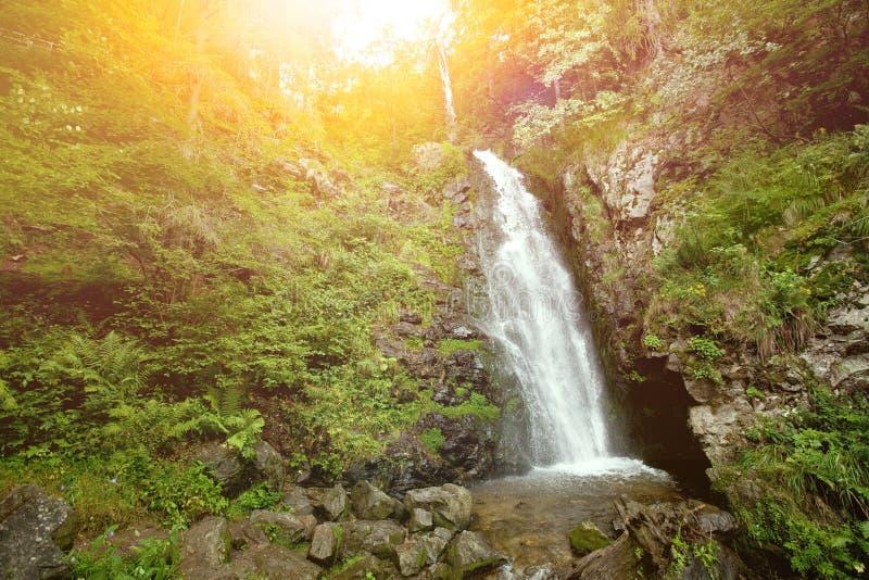 Wasserfall im europäischen Wald an stockbild