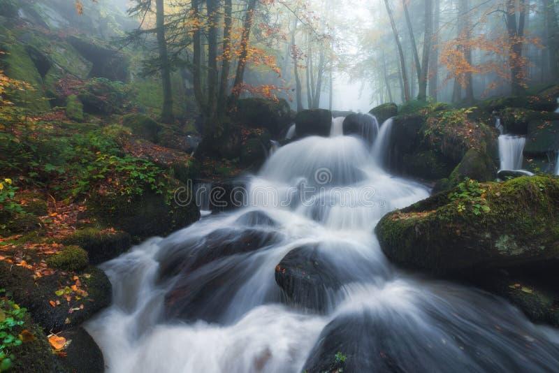 Download Wasserfall im Herbst stockfoto. Bild von hintergrund - 103867260