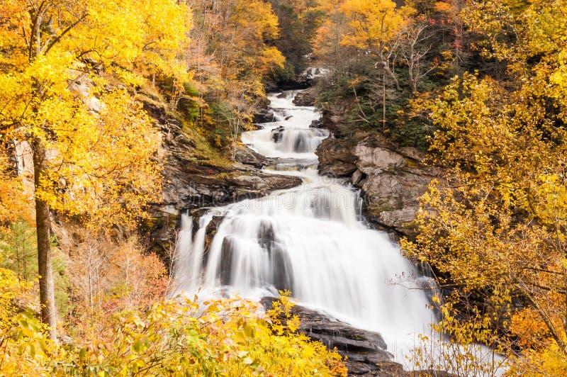 Wasserfall im Herbst, im Wald des North Carolina, nahe Hochländer lizenzfreies stockbild