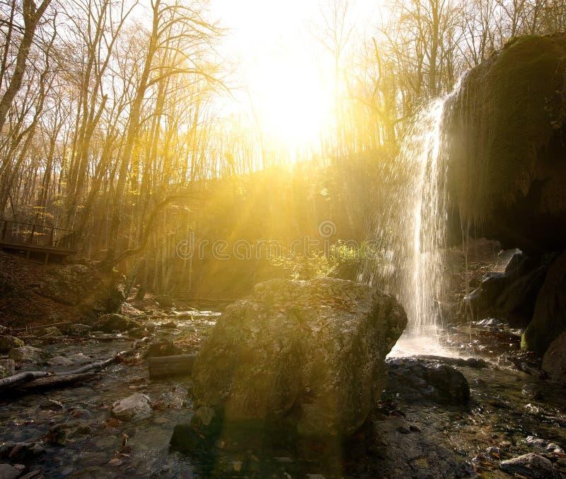 Wasserfall im Holz lizenzfreie stockfotos